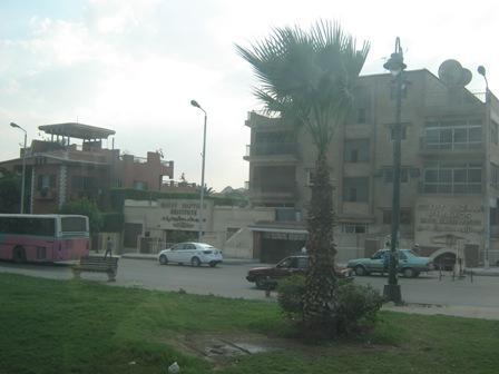 Каир. Институт папируса
