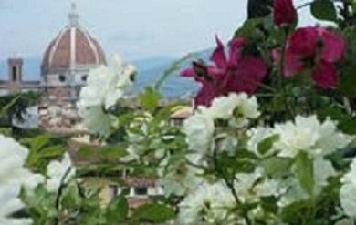Сад ирисов во Флоренции