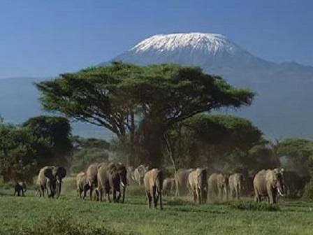 Кения - достопримечательности