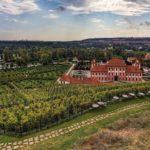 Ботанический сад в Праге открыт бесплатно