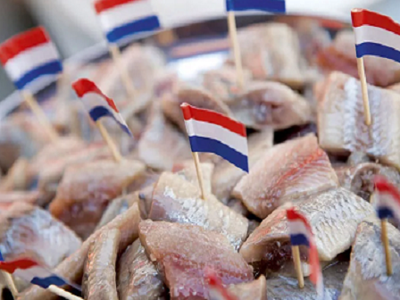 День селедки в Голландии